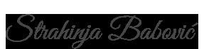 Babovic Wedding Photographer Logo